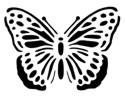 Stencil_Butterfly